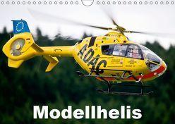 Modellhelis (Wandkalender 2019 DIN A4 quer) von Selig,  Bernd