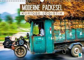 Moderne Packesel: kuriose Logistik (Wandkalender 2018 DIN A3 quer) von CALVENDO