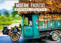 Moderne Packesel: kuriose Logistik (Wandkalender 2019 DIN A2 quer) von CALVENDO