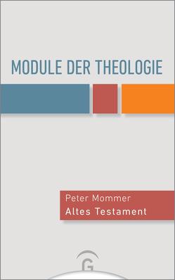 Module der Theologie von Deeg,  Alexander, Fitschen,  Klaus, Meier,  Daniel, Mommer,  Peter, Roose,  Hanna, Surall,  Frank
