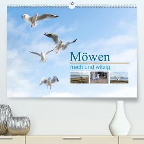 Möwen frech und witzig (Premium, hochwertiger DIN A2 Wandkalender 2020, Kunstdruck in Hochglanz) von calmbacher,  Christiane