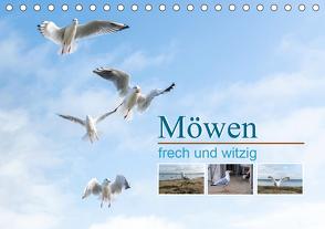 Möwen frech und witzig (Tischkalender 2020 DIN A5 quer) von calmbacher,  Christiane