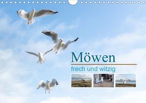 Möwen frech und witzig (Wandkalender 2020 DIN A4 quer) von calmbacher,  Christiane