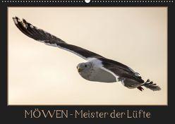 Möwen – Meister der Lüfte (Wandkalender 2019 DIN A2 quer) von Schwarz Fotografie,  Thomas