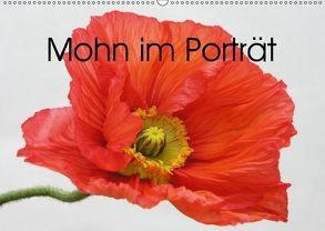 Mohn im Porträt (Wandkalender 2018 DIN A2 quer) von Kruse,  Gisela
