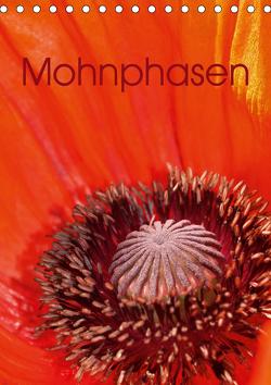 Mohnphasen (Tischkalender 2021 DIN A5 hoch) von Brigitte Deus-Neumann,  Dr.