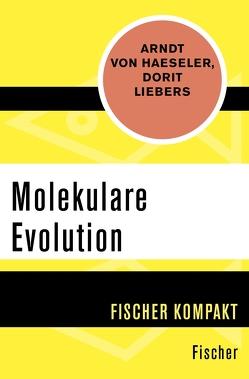 Molekulare Evolution von Haeseler,  Arndt von, Liebers,  Dorit