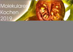 Molekulares Kochen 2019 (Wandkalender 2019 DIN A2 quer) von Heiligenstein,  Marc