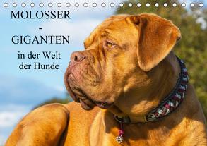 Molosser – Giganten in der Welt der Hunde (Tischkalender 2019 DIN A5 quer) von Starick,  Sigrid