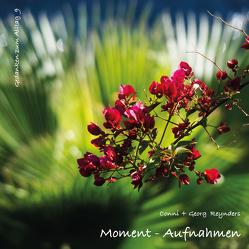 Moment-Aufnahmen von Reynders,  Conni, Reynders,  Georg