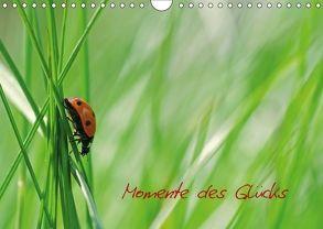 Momente des Glücks (Wandkalender 2018 DIN A4 quer) von Design Fotografie by Tanja Riedel,  Avianaarts