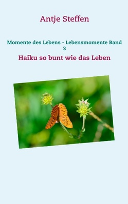 Momente des Lebens – Lebensmomente Band 3 von Steffen,  Antje