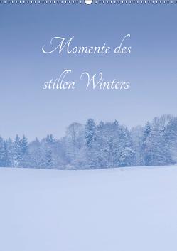 Momente des stillen Winters (Wandkalender 2019 DIN A2 hoch) von Wasinger,  Renate