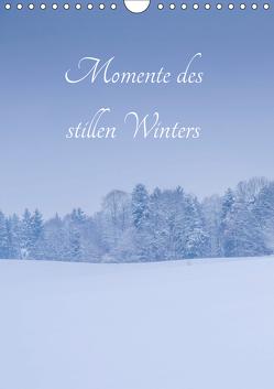Momente des stillen Winters (Wandkalender 2019 DIN A4 hoch) von Wasinger,  Renate