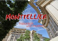 Montpellier – historisch und modern (Wandkalender 2019 DIN A3 quer) von Haafke,  Udo