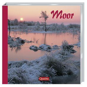Moor von Rolfes,  Willi