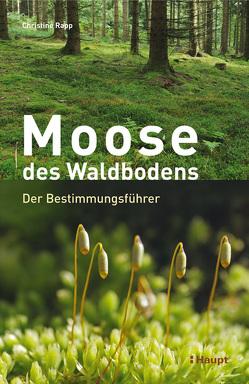 Moose des Waldbodens von Rapp,  Christine