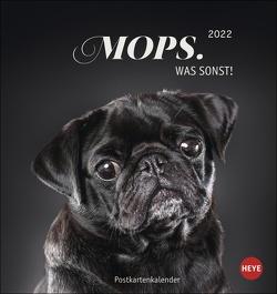 Mops Postkartenkalender 2022 von Heye