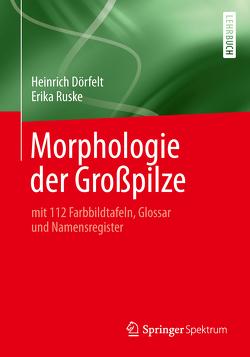 Morphologie der Großpilze von Dörfelt,  Heinrich, Ruske,  Erika