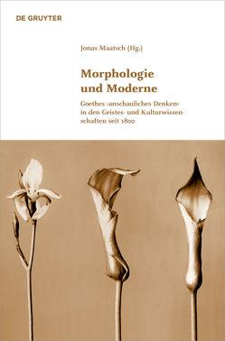 Morphologie und Moderne von Maatsch,  Jonas