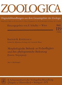 Morphologische Befunde an Fächerflüglern und ihre phylogenetische… von Kinzelbach,  Ragnar K.