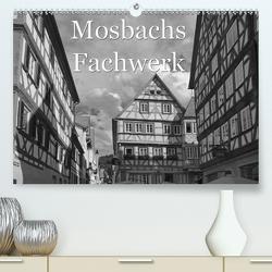 Mosbachs Fachwerk (Premium, hochwertiger DIN A2 Wandkalender 2021, Kunstdruck in Hochglanz) von Flori0