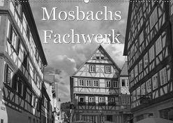 Mosbachs Fachwerk (Wandkalender 2019 DIN A2 quer) von Flori0