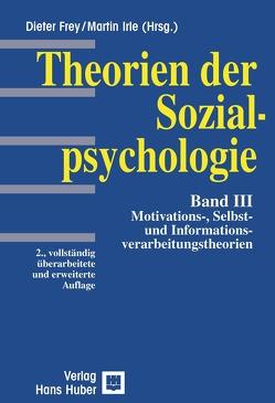 Motivation und Informationsverarbeitung von Frey,  Dieter, Irle,  Martin