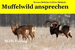 Muffelwild ansprechen von Böttcher,  Werner, Matjasic,  Peter
