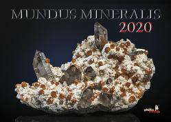 MUNDUS MINERALIS 2020 von Neubert,  Jörg, PhillisVerlag GmbH