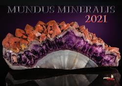 MUNDUS MINERALIS 2021 von Neubert,  Jörg