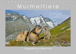 MurmeltiereAT-Version (Tischkalender 2019 DIN A5 quer) von Trunk,  Alfred