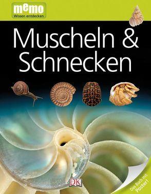 memo Wissen entdecken. Muscheln & Schnecken