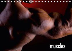 muscles (Tischkalender 2019 DIN A5 quer) von Mende,  Marcel