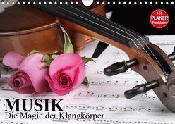 Musik – Die Magie der Klangkörper (Wandkalender 2019 DIN A4 quer) von Stanzer,  Elisabeth