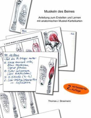 Muskeln des Beines von Strasmann,  Thomas J.