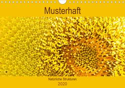 Musterhaft – Natürliche Strukturen (Wandkalender 2020 DIN A4 quer) von Bölts,  Meike