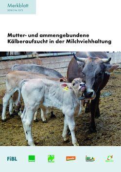 Mutter- und ammengebundene Kälberaufzucht in der Milchviehhaltung von Ivemeyer,  Silvia, Schneider,  Claudia, Spengler Neff,  Anet