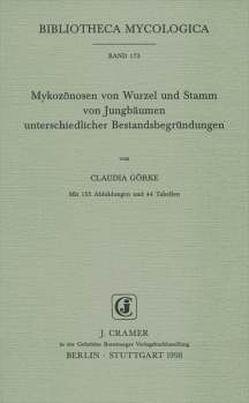Mykozönosen von Wurzel und Stamm von Jungbäumen unterschiedlicher Bestandsbegründungen von Görke,  Claudia