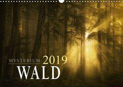 Mysterium Wald (Wandkalender 2019 DIN A3 quer)
