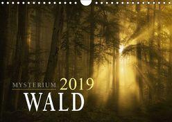Mysterium Wald (Wandkalender 2019 DIN A4 quer)