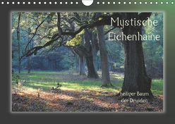 Mystische Eichenhaine (Wandkalender 2019 DIN A4 quer) von Hubner,  Katharina