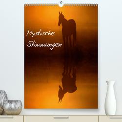 Mystische Stimmungen (Premium, hochwertiger DIN A2 Wandkalender 2020, Kunstdruck in Hochglanz) von Tuchel,  Lars
