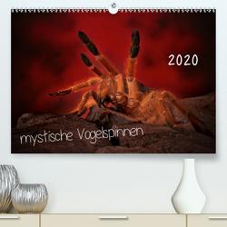 Mystische Vogelspinnen (Premium, hochwertiger DIN A2 Wandkalender 2020, Kunstdruck in Hochglanz) von Baderschneider,  Horst