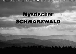 Mystischer Schwarzwald (Wandkalender 2019 DIN A2 quer) von Linderer,  Günter