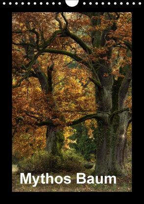 Mythos Baum / 2018 (Wandkalender 2018 DIN A4 hoch) von Barig,  Joachim