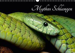 Mythos Schlangen (Wandkalender 2018 DIN A3 quer) von Liepack,  Daniel