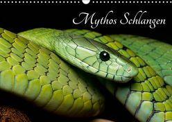 Mythos Schlangen (Wandkalender 2019 DIN A3 quer) von Liepack,  Daniel