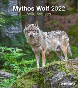 Mythos Wolf 2022 – Foto-Kalender – Wand-Kalender – 30×34