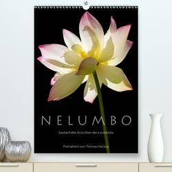 N E L U M B O – Zauberhafte Ansichten der Lotosblüte (Premium, hochwertiger DIN A2 Wandkalender 2021, Kunstdruck in Hochglanz) von Herzog,  Thomas, www.bild-erzaehler.com